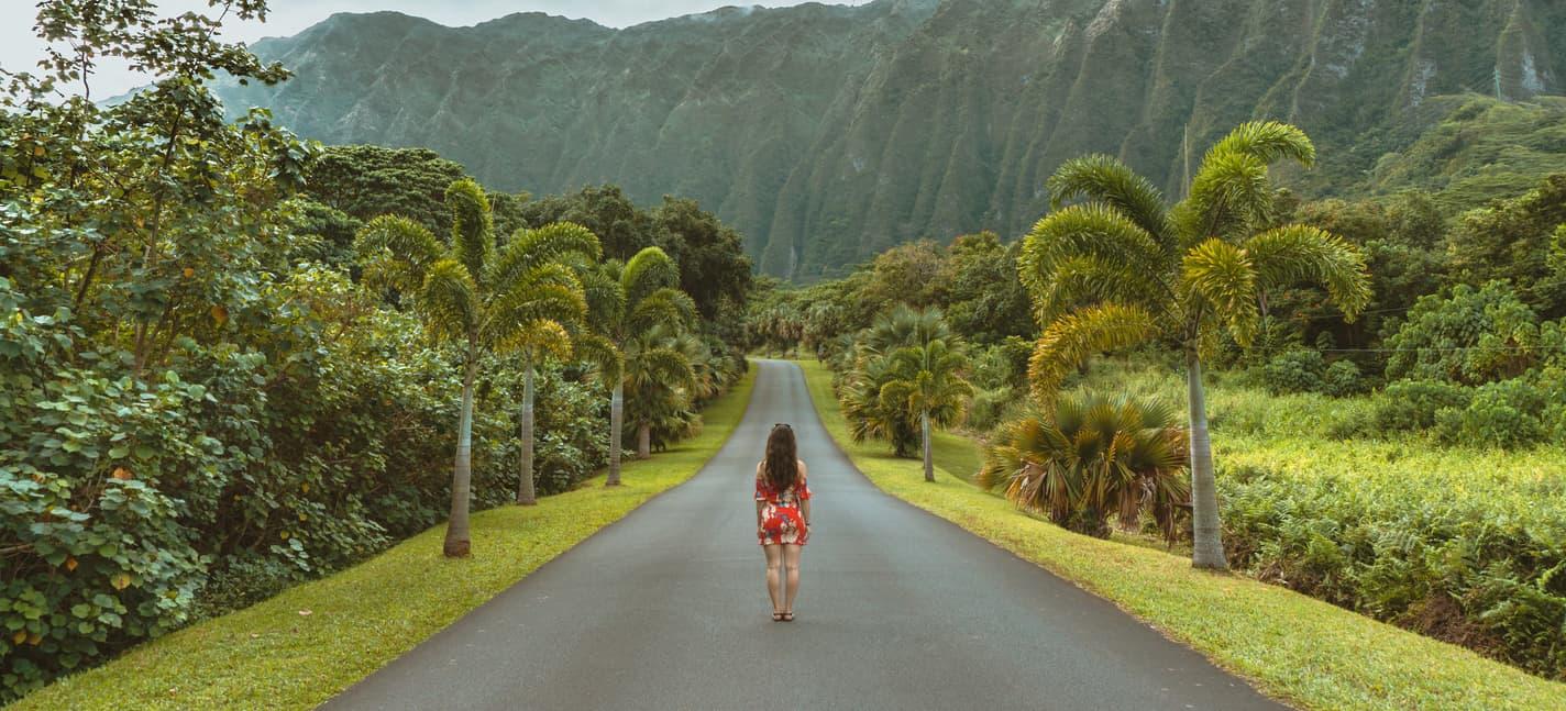 Mis vacaciones hawaianas