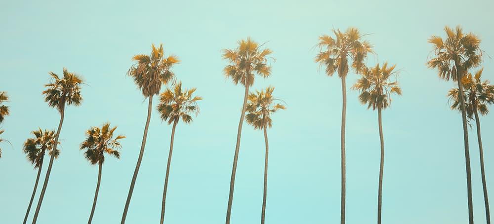 La guía fundamental para un fin de semana en Los Angeles